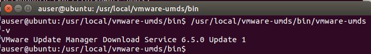 UMDS Server Running